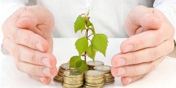 10 Золотых правил инвестирования.